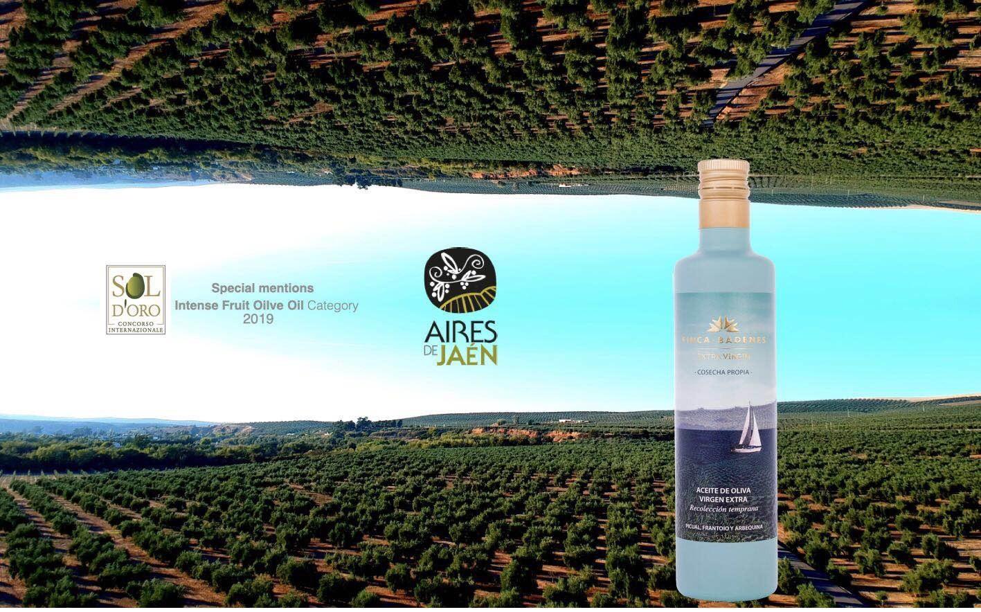 巴狄尼絲莊園頂級初榨橄欖油500ml*6瓶(無附盒)
